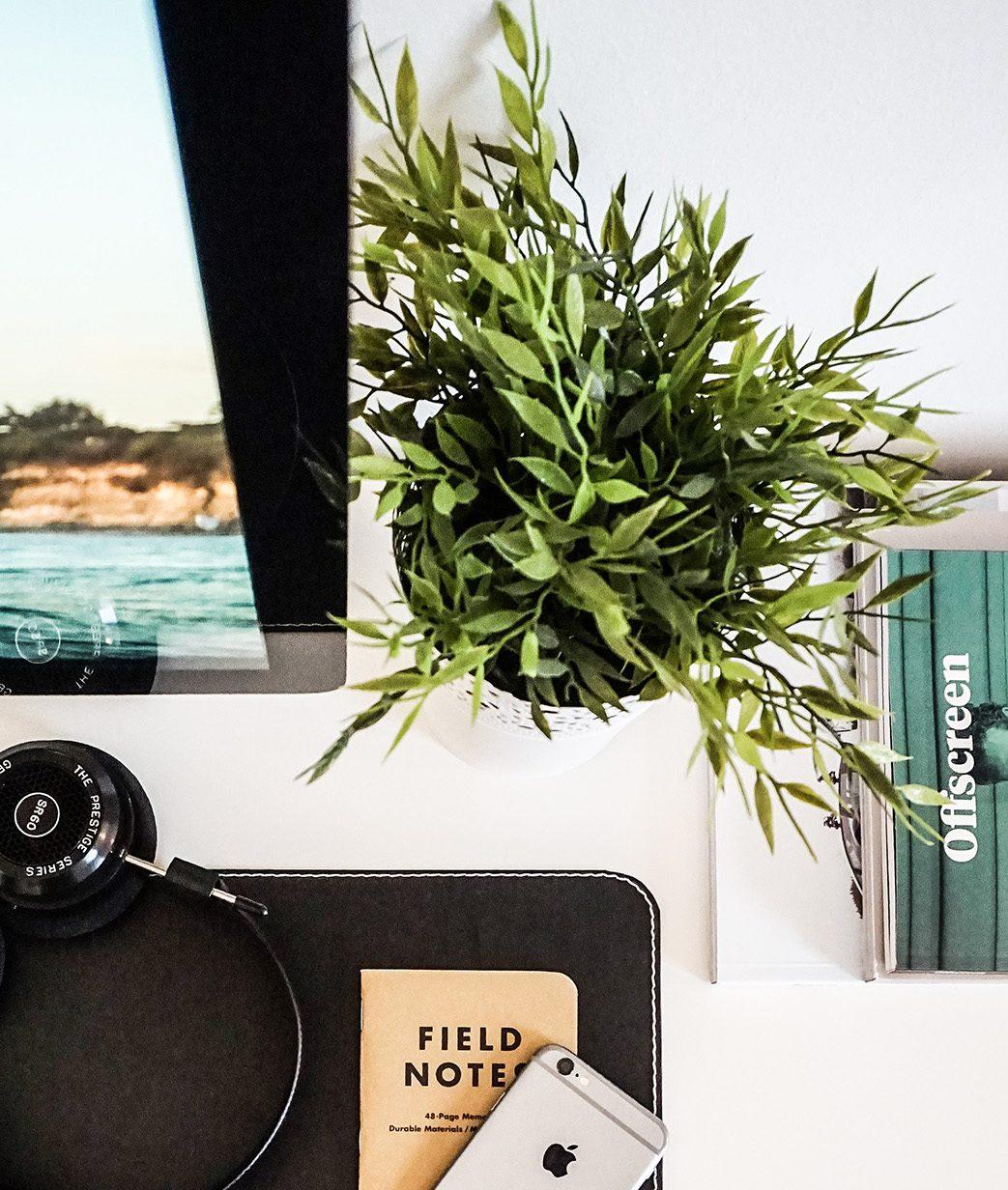 Blumen im Büro